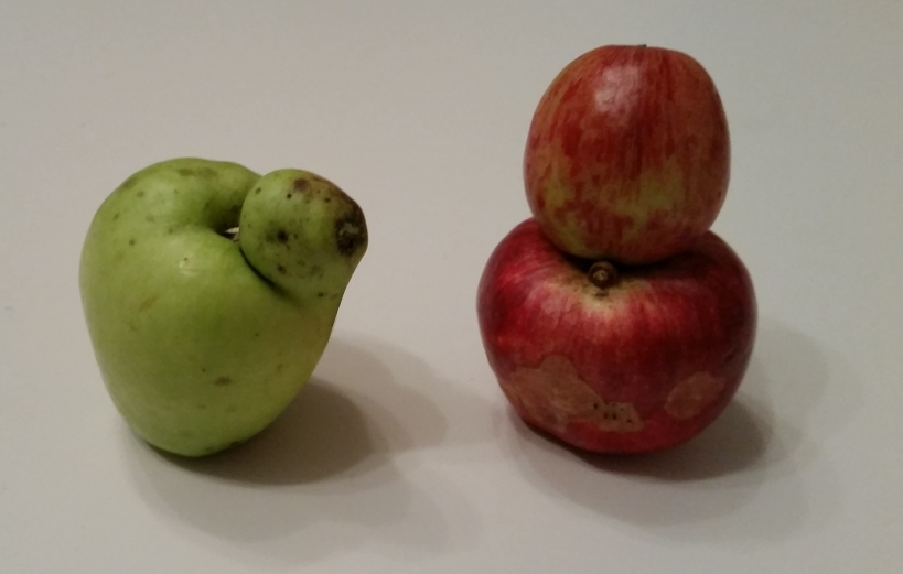 Apfel_kurios