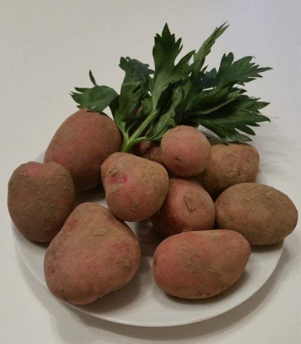 KartoffelnChristoph