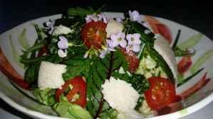 Salat_Glueck03