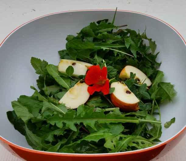 salat_hasen_01